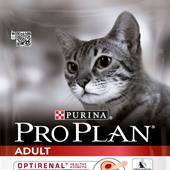 Pro Plan Adult Cat Chicken - 3kg or 10kg